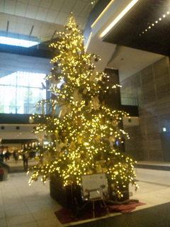 オーテモリのクリスマスツリー